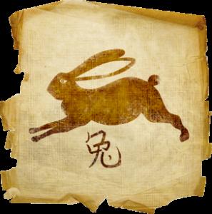 1963 кролик или кот