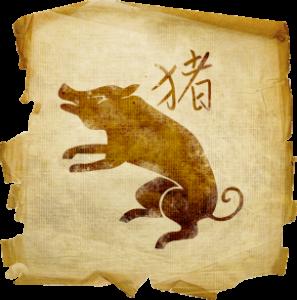 Свинья и кот гороскоп
