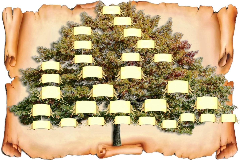 дерево потомков картинка словам