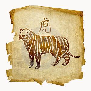 Гороскоп он тигр она кот
